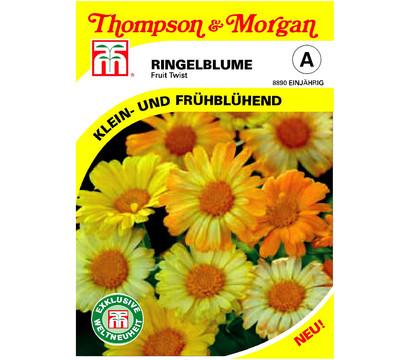 Thompson & Morgan Samen Ringelblume 'Fruit Twist'
