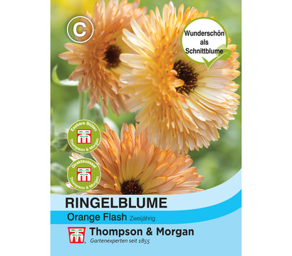 Thompson & Morgan Samen Ringelblume 'Orange Flash'
