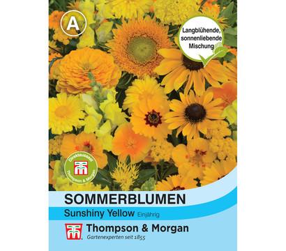 Thompson & Morgan Samen Sommerblumen 'Sunshiny Yellow'
