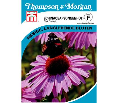 Thompson & Morgan Samen Sonnenhut 'Pink Parasol'