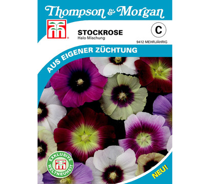 Thompson & Morgan Samen Stockrose 'Halo Mischung'