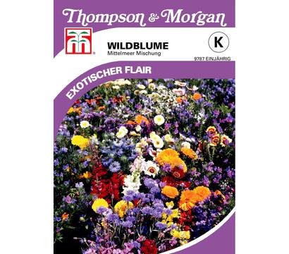 Thompson & Morgan Samen Wildblume 'Mittelmeer Mischung'