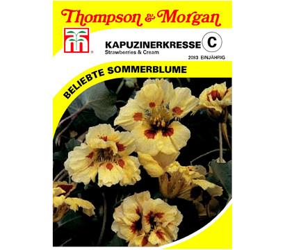 thompson morgan samen kapuzinerkresse 39 strawberries cream 39 dehner garten center. Black Bedroom Furniture Sets. Home Design Ideas