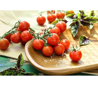 Tomate 'Philovita'