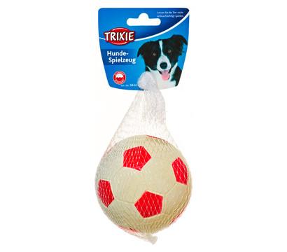 Trixie Hundespielzeug Gummiball