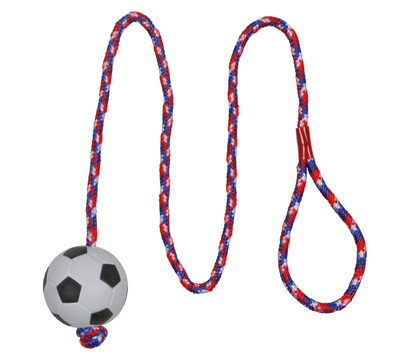 Trixie Hundespielzeug Moosgummifußball am Seil, Ø 6 cm