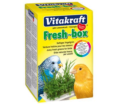 Vitakraft Fresh-Box Vogelgrün für Sittiche und Kanarienvögel