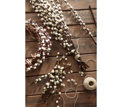 Weidenk tzchen bund natur dehner garten center - Weidenkatzchen deko ...