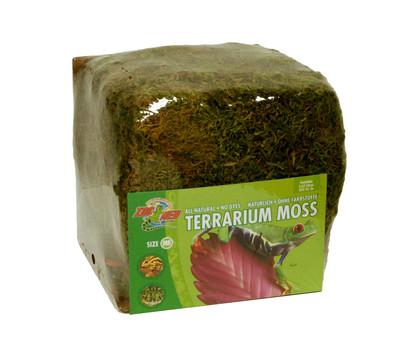 ZooMed Terrarium Bodengrund Terrarium Moos Minibale