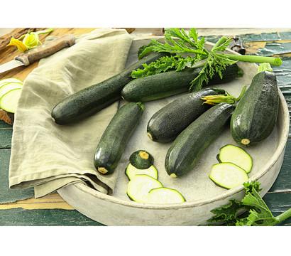 Zucchini, grün