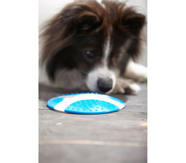 Dehner Hundespielzeug Frisbee Run