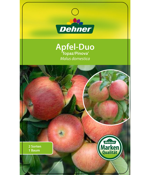 Apfel-Duo 'Topaz/Pinova'