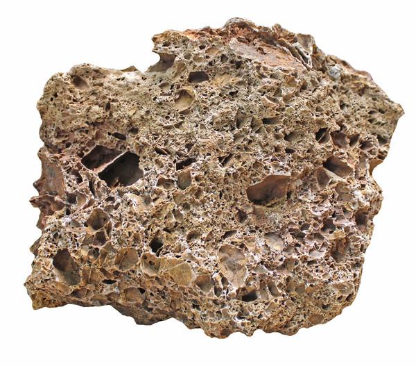 aquadeco Aquariumdeko Versteinertes Laub, 2,3 - 2,7kg