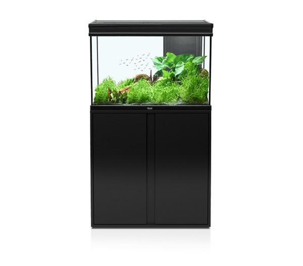 aquatlantis elegance expert 80 aquarium kombination dehner. Black Bedroom Furniture Sets. Home Design Ideas