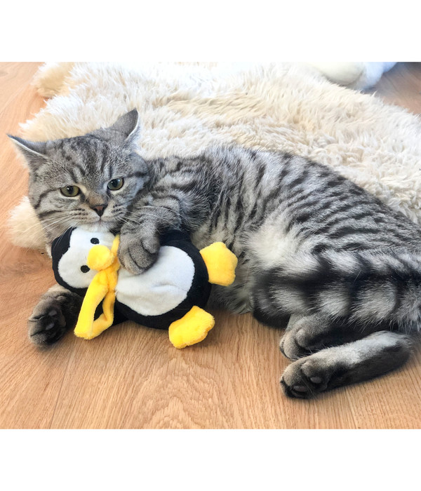 Aumüller Katzenspielzeug Paddy