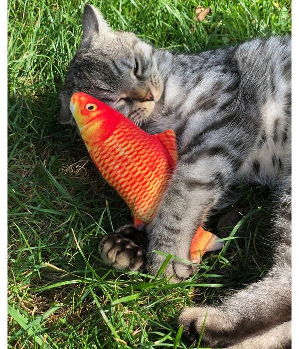 Aumüller Katzenspielzeug Spielkissen Goldfisch