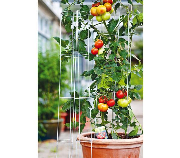 bellissa Tomatenturm