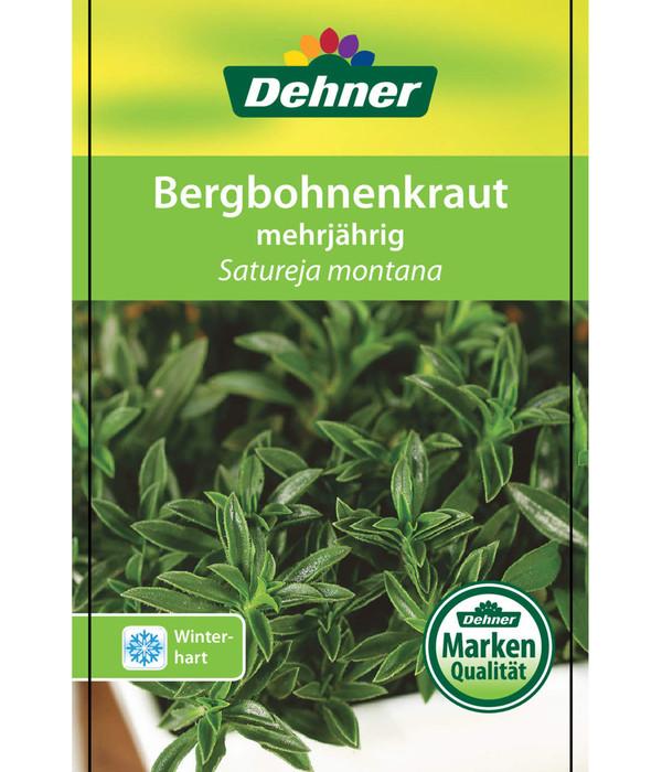 Berg-Bohnenkraut, Winter-Bohnenkraut