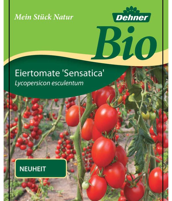 Bio Eiertomate 'Sensatica'