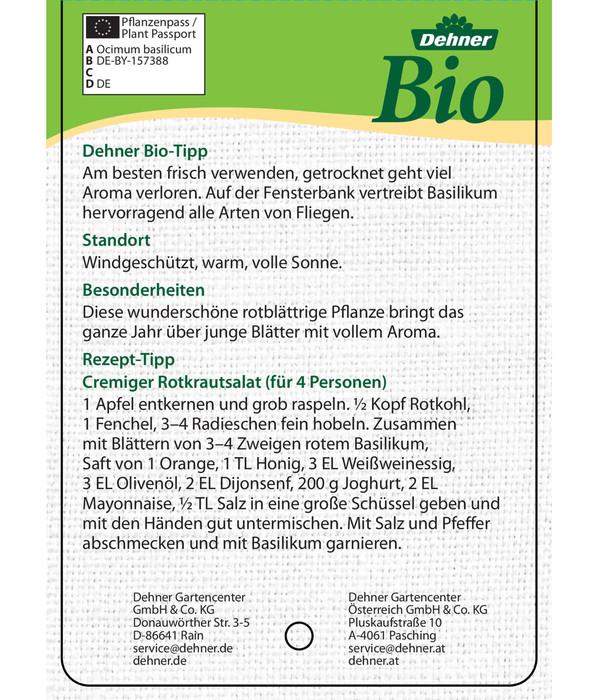 Bioland Basilikum, rot