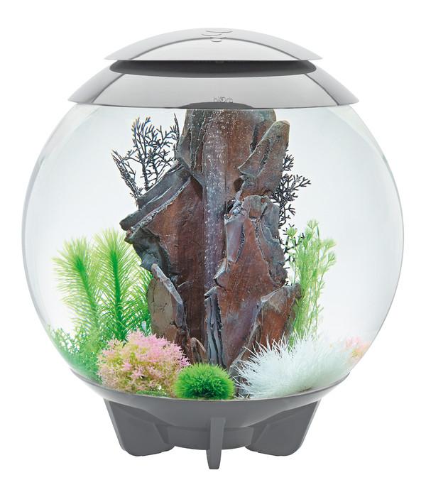 biOrb® Aquarium HALO 60 LED
