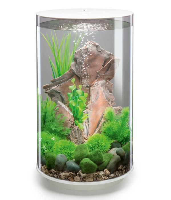 biOrb® Aquarium TUBE 30 MCR