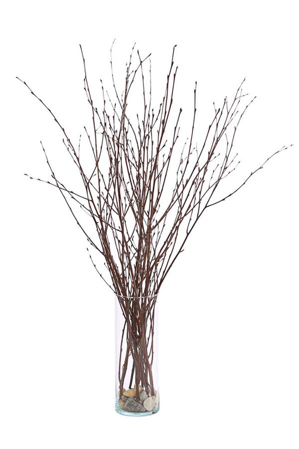 Birkenzweige Bund, 70 cm