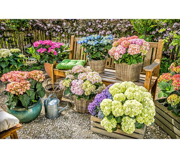 Blechgießkanne für den Garten