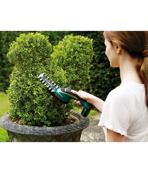 Bosch ASB 10,8 LI Akku-Strauch- und Grasscheren-Set