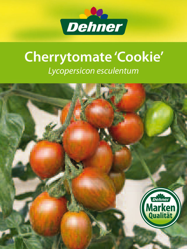 Cherrytomate 'Cookie'