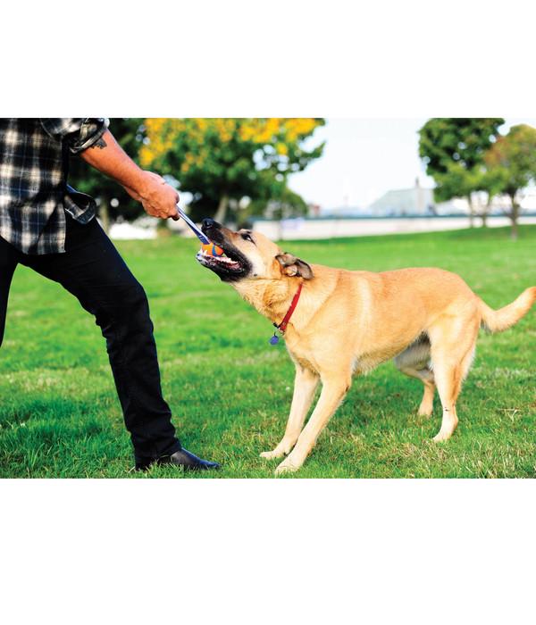 Chuckit!® Hundespielzeug Ultra Tug mit Handschlaufe