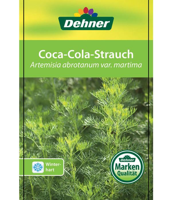 Coca-Cola-Strauch