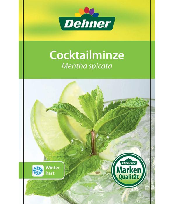 Cocktailminze