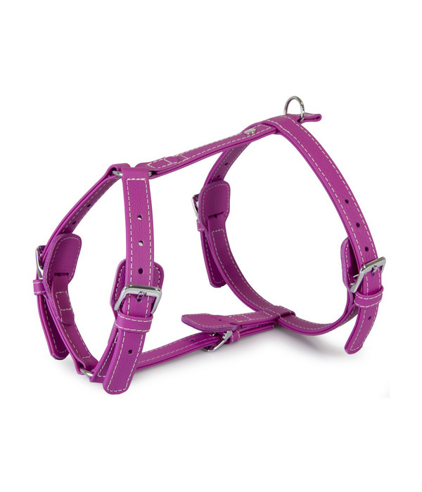 Das Lederband Hundegeschirr Style Barcelona Rose-Violet