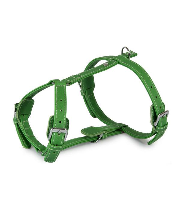 Das Lederband Hundegeschirr Style Barcelona Summer-Green