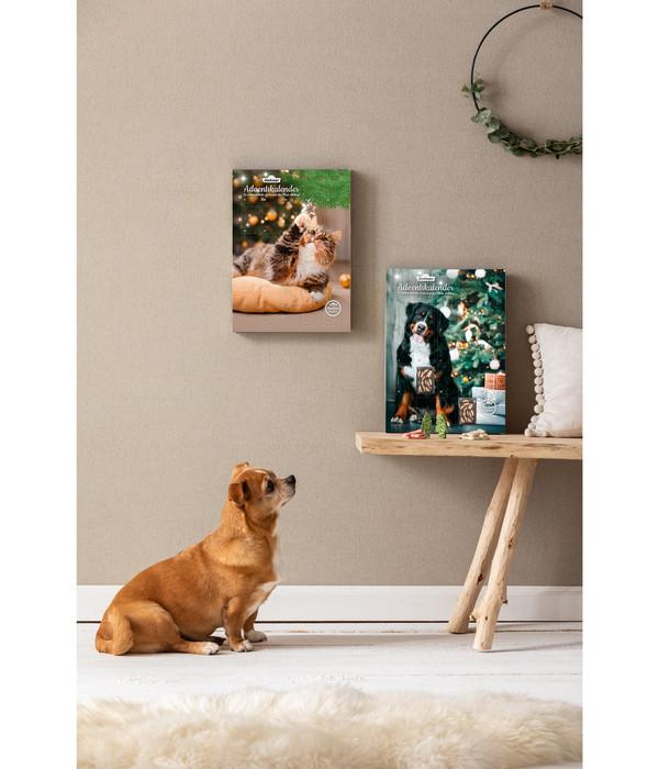 Dehner Adventskalender Hund