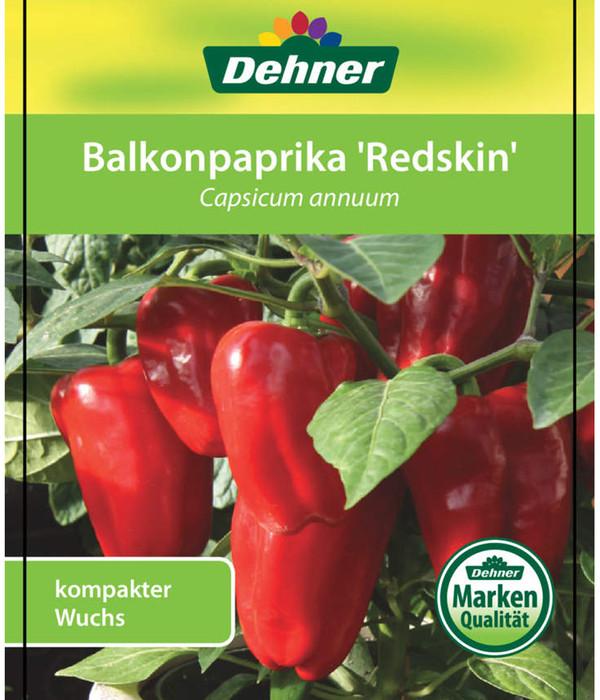Prächtig Dehner Balkon-Paprika | Dehner @CT_73