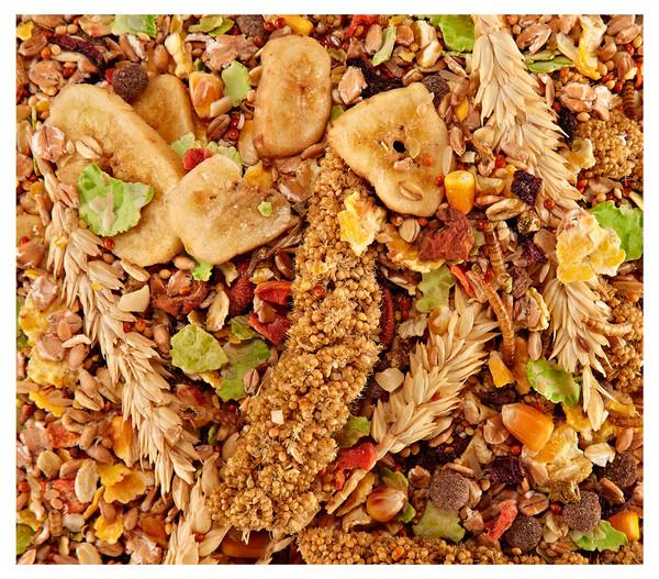 Dehner Best Nature Rennmausfutter, 500 g