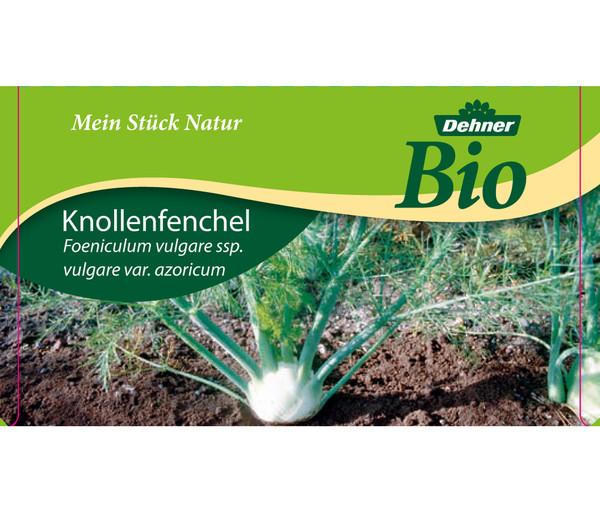 Dehner Bio Knollenfenchel, 6er Schale