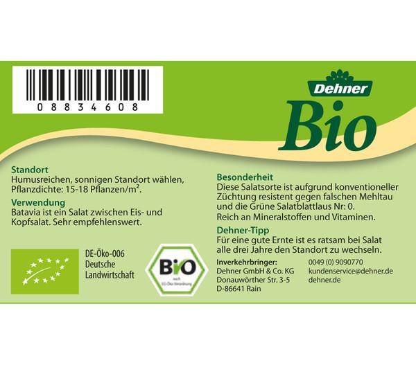 Dehner Bio Salanova® Batavia, 6er Schale