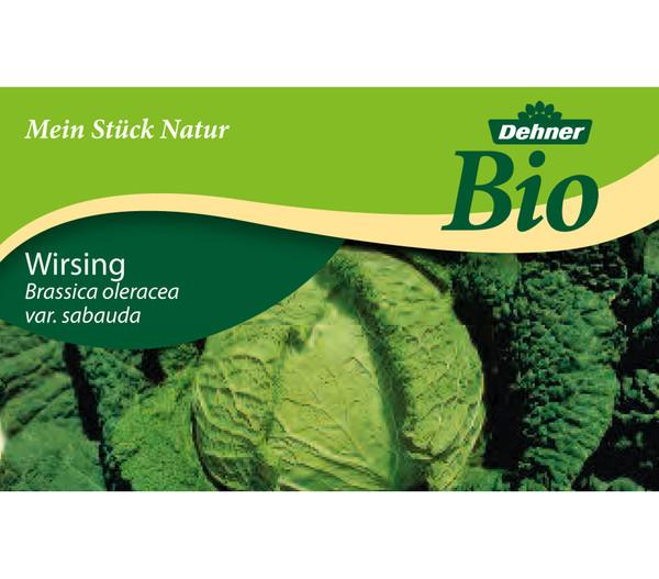 Dehner Bio Wirsing, 6er Schale