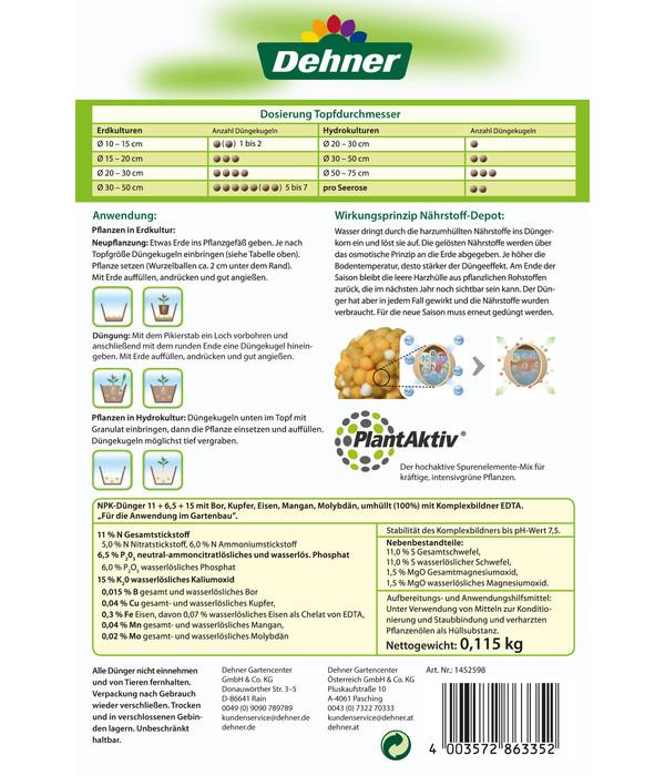 Dehner Düngekugeln für Zimmerpflanzen