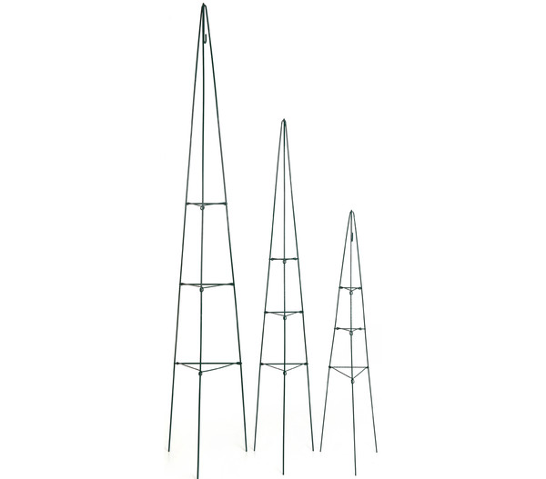 Dehner faltbare Rankpyramide
