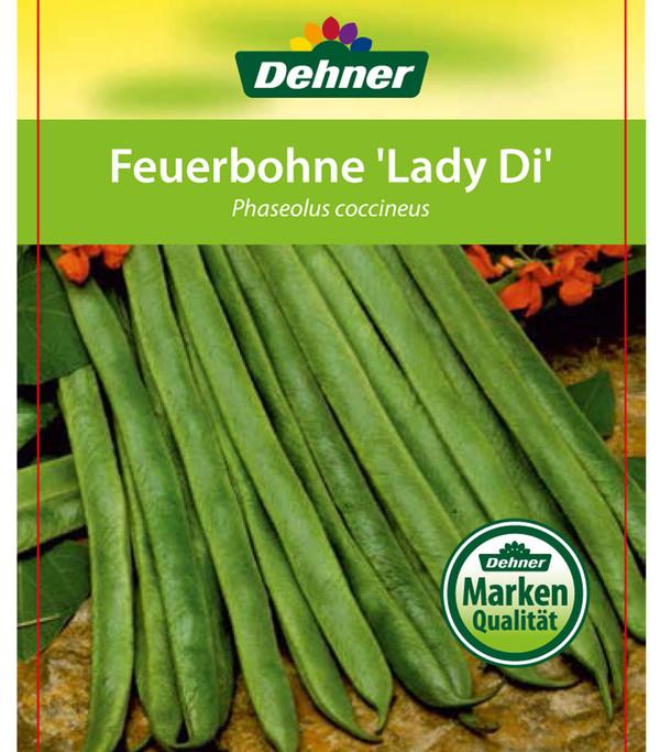 Dehner Feuerbohne 'Lady Di'