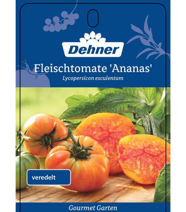 Dehner Gourmet Garten Ananastomate, veredelt