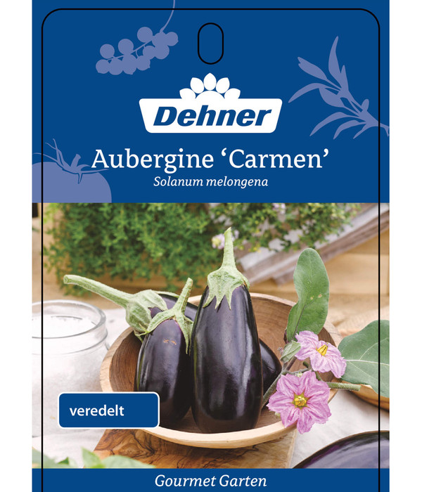 Dehner Gourmet Garten Aubergine 'Carmen'