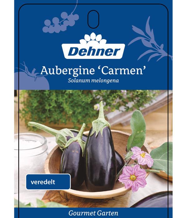Dehner Gourmet Garten Aubergine, veredelt