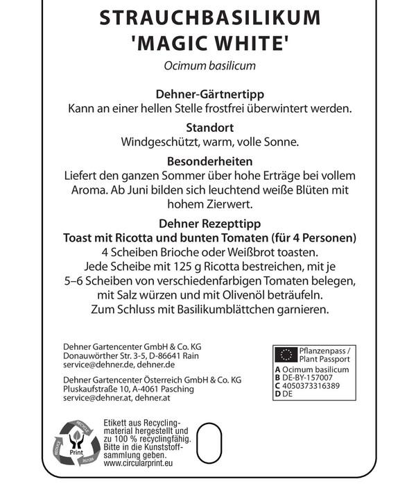 Dehner Gourmet Garten Basilikum 'Magic White'