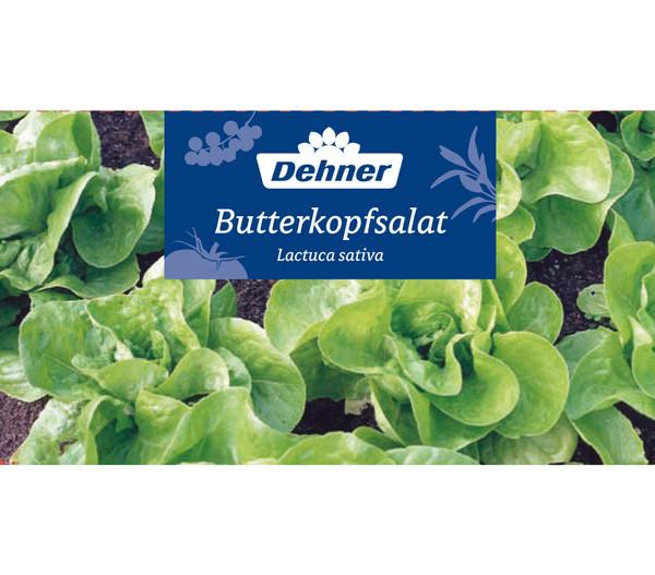 Dehner Gourmet Garten Butterkopfsalat