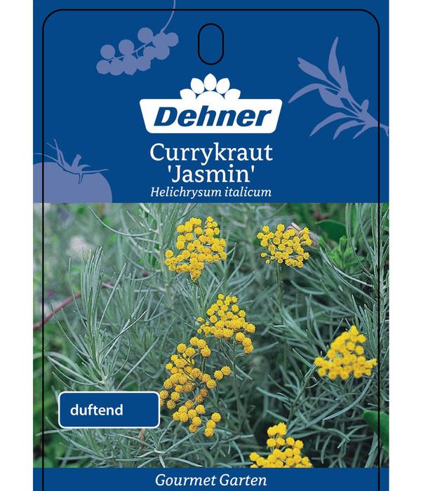 Dehner Gourmet Garten Currykraut 'Jasmin'